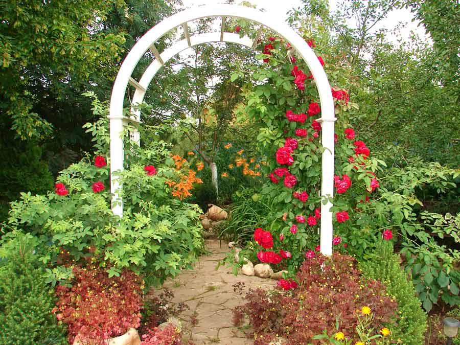 Арки для садовых растений